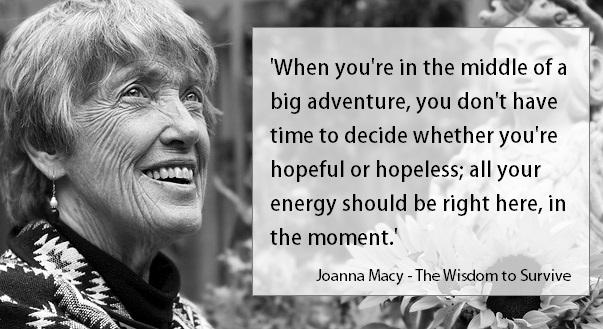 Wisdom quote Joanna Macy